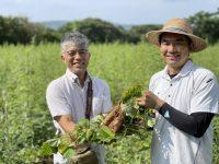 新規就農者も実践できる!? 有機栽培に成功する人がやっていることとは