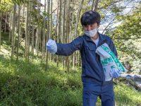 さっと撒くだけ!やっかいな竹を手軽に枯らす除草剤に注目