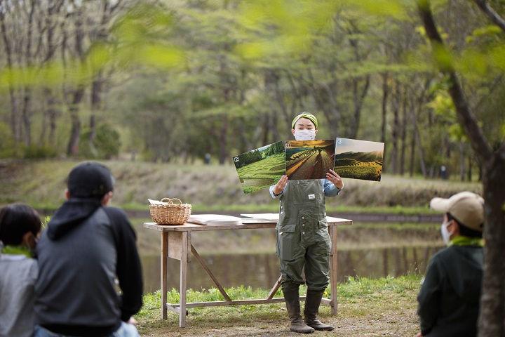 【リゾナーレ那須】田んぼの風景(日本・タイ・ベトナム)のフリップ