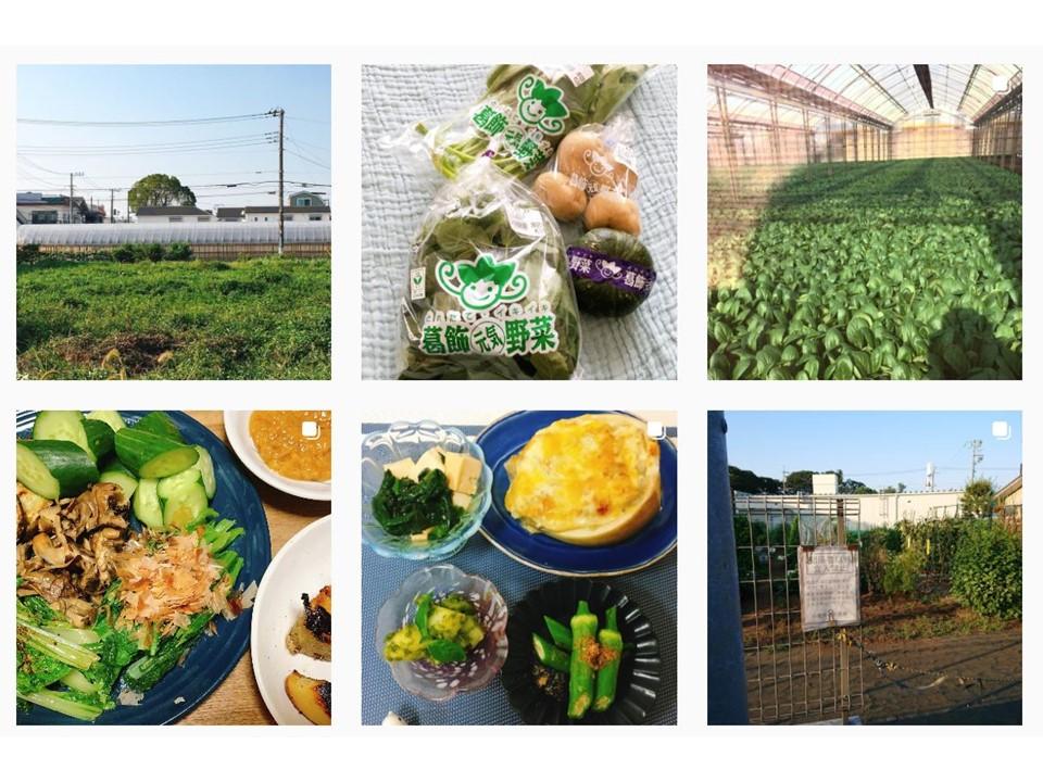 Instagramフォトコンテスト「#東京野菜みつけた」キャンペーン結果発表!