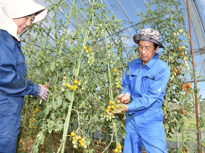 定年後の第二の人生に農業を、独自支援する町を訪ねて【長野県富士見町】