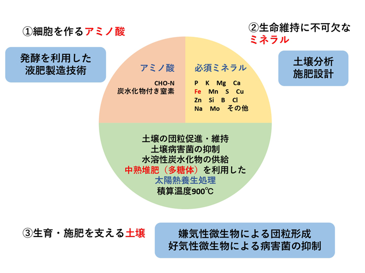 BLOF理論の仕組み