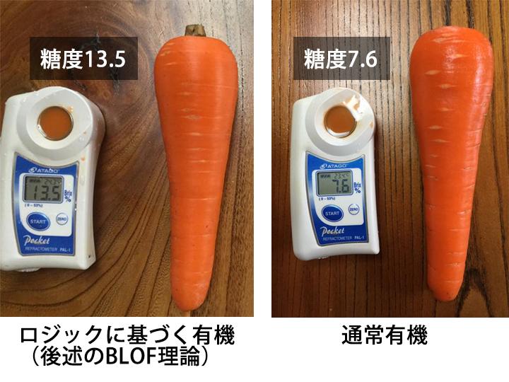 同一品種、同一圃場、同一時期に栽培されたニンジンの比較