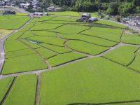 温暖で自然が豊かな兵庫県上郡町で農業や地域活動にチャレンジしませんか?【「あぐトリ」参加者募集中!】